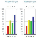 DISC Style Graphs